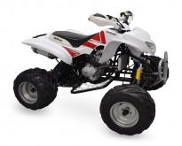 QUADRICICLO 250 FORCE